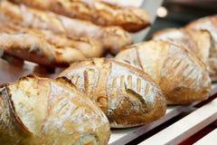 Pan cocido al horno fresco del artesano Imagen de archivo libre de regalías