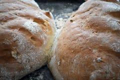 Pan cocido fresco imagen de archivo libre de regalías