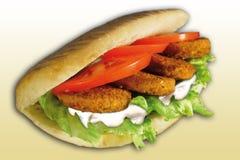 Pan con el falafel Imagen de archivo libre de regalías