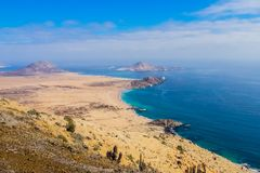 Pan de Azucar National Park, in the Atacama Desert is the best p. Lace to understand how life grows in the desert,coastline royalty free stock photography