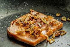 Pan de carne cocido con las cebollas Imagen de archivo libre de regalías