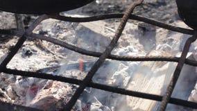 Pan de fritada en el fuego Llamas reales en el fuego con los registros ardientes almacen de metraje de vídeo