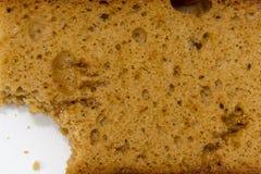 Pan de jengibre Fotografía de archivo libre de regalías