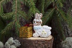 Pan de jengibre de la Navidad bajo la forma de liebre Foto de archivo libre de regalías