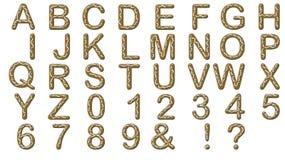 Pan de jengibre del alfabeto Foto de archivo libre de regalías