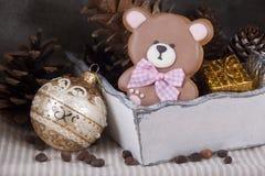 Pan de jengibre del jengibre bajo la forma de oso de peluche Fotos de archivo libres de regalías