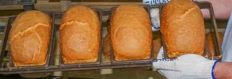 Pan de la mantequilla, pan, pan Imagen de archivo libre de regalías