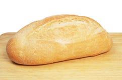 Pan del Bloomer a bordo fotos de archivo libres de regalías