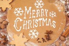 Pan del jengibre de los días de fiesta de la Navidad Imagen de archivo