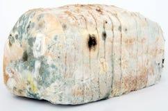 Pan del pan marrón mohoso Fotos de archivo