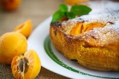 Pan di Spagna con l'albicocca fotografie stock libere da diritti