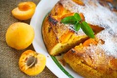 Pan di Spagna con l'albicocca fotografia stock libera da diritti