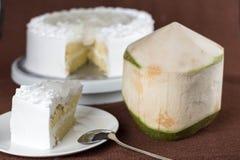 Pan di Spagna fresco squisito del latte della guarnizione della noce di cocco con a bassa percentuale di zucchero Immagini Stock Libere da Diritti