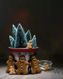 Pan di zenzero al Natale Immagine Stock Libera da Diritti