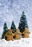 Pan di zenzero al Natale Fotografie Stock