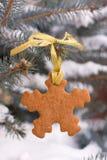 Pan di zenzero di forma del fiocco di neve sull'albero di Natale Immagine Stock Libera da Diritti