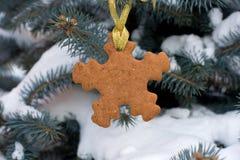 Pan di zenzero di forma del fiocco di neve sull'albero di Natale Immagini Stock