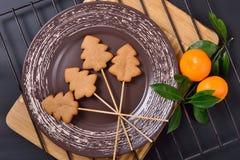 Pan di zenzero e un ramo con due mandarini maturi Fotografia Stock Libera da Diritti