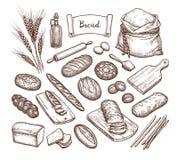 Pan e ingredientes ilustración del vector
