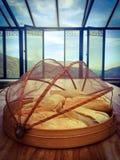 Pan en el vector Foto de archivo libre de regalías