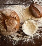 Pan en el vector Fotografía de archivo libre de regalías
