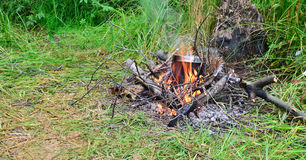 Pan on a fire. And green grass Stock Images