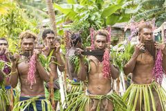 Pan flute player Solomon Island, South Pacific Ocean. Young men playing handmade panpipes ceremony on Solomon Islands Stock Image