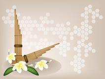 Pan Flute y flor musicales del Plumeria en el CCB de Brown Fotografía de archivo