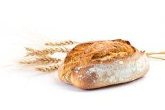 Pan fresco Imagen de archivo libre de regalías