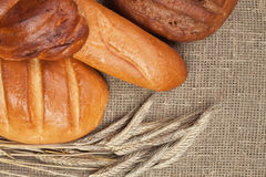 Pan fresco con los oídos del centeno Imágenes de archivo libres de regalías