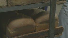 Pan fresco en la panadería metrajes