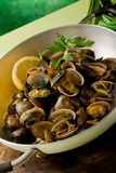 Pan with fresh Clams Royalty Free Stock Photo