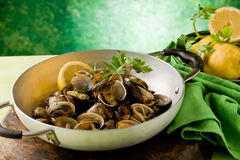 Pan with fresh Clams Stock Image