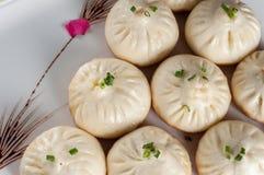 Pan-Fried Baozi arkivbilder