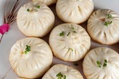 Pan-Fried Baozi royaltyfri bild