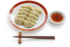 Pan fried chinese dumplings. On white background Stock Photos