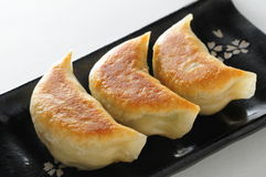 Pan fried dumpling. Shanghai pan fried pork dumpling Royalty Free Stock Photo