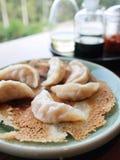 Pan-fried dumplings. Chinese style pan-fried meat dumplings (pot stickers stock image