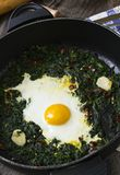 Fried egg and spinach Stock Images