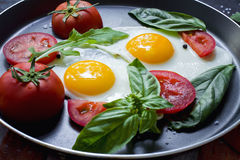 Pan of fried eggs, basil and tomatoes with bread on grunge metallic table surface. Stock Image
