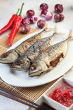 Pan fried fish Royalty Free Stock Image