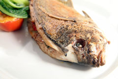 Pan fried fish food portion Royalty Free Stock Photos