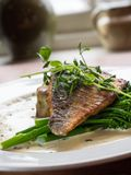 Pan fried fish with vegetables. Restaurant dish. Fish dish with vegetables and creamy sauce served on a white plate. Restaurant special stock images