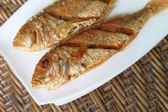 Pan fried fish on white plate over rattan texture royalty free stock images