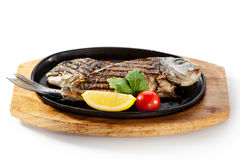 Pan-Fried Gilt Head Bream. With Lemon Slice and Tomato stock photography