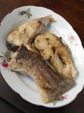 Pan-fried Moray eels fillets Stock Images