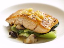 Pan fried Salmon. Stock Photo