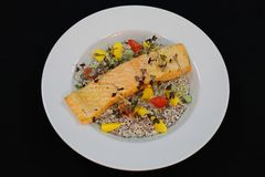 Pan fried salmon fillet with creamy quinoa royalty free stock images