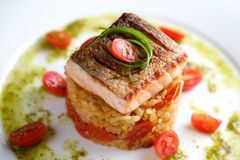 Pan fried salmon on the rice royalty free stock photos