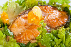 Fried salmon on a garden salad topped with fresh butter Stock Photography